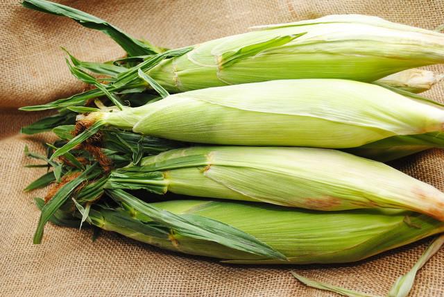 玉米全身都是宝,夏季养生少不了