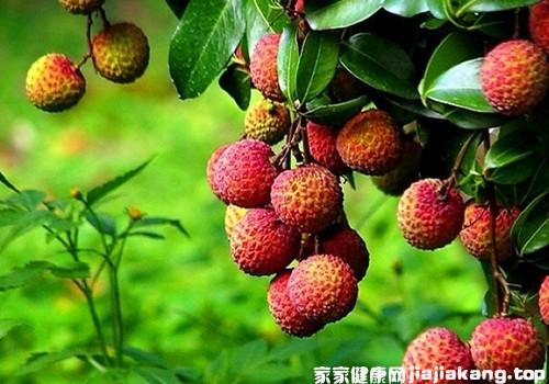 夏季吃水果好处多  但这些水果易上火要少吃图1