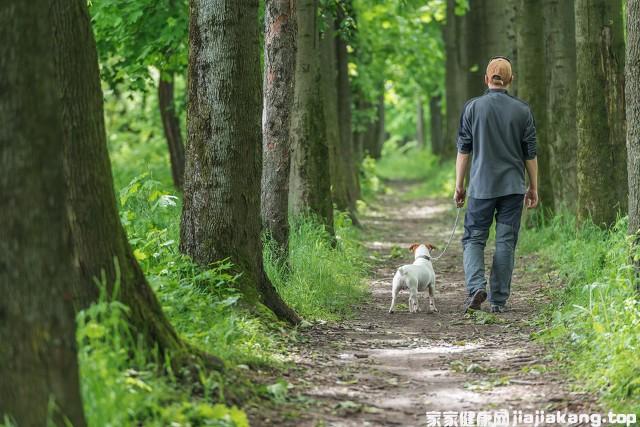 散步养生不伤膝盖的方法有哪些,虽简单却不得不防图3