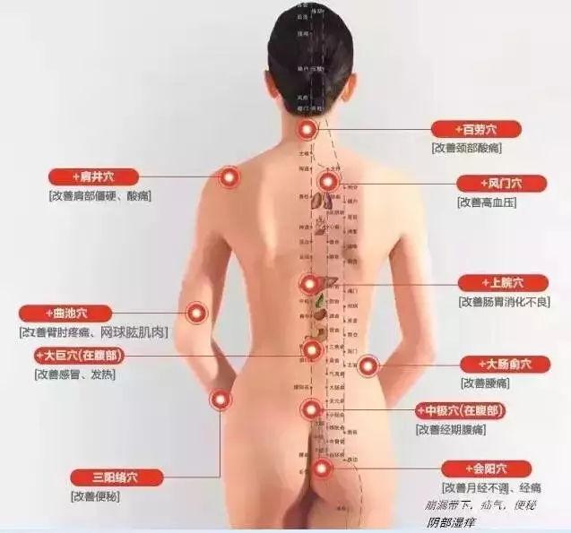 人体的衰老的过程,就是经络不断堵塞的过程图1