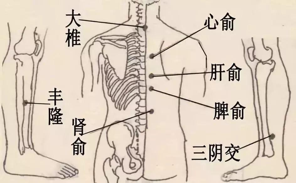 """中医""""五劳""""会生病,您占了""""几劳""""?"""