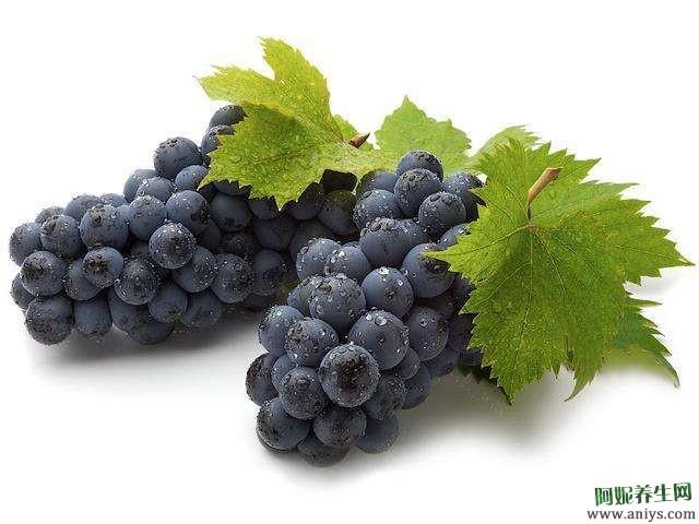 葡萄中医药用价值可治疗哪些疾病
