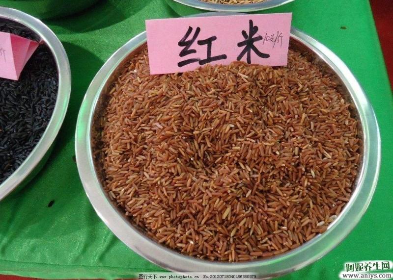 红米的营养价值及功效,食疗密码