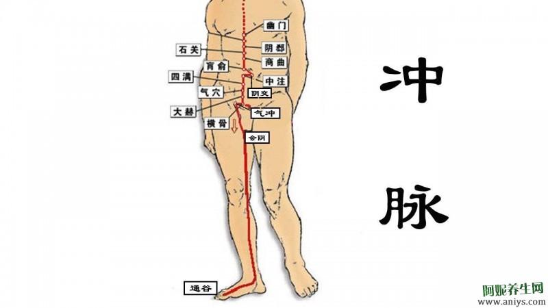 奇经八脉的循行 生理功能 八个代表性穴位