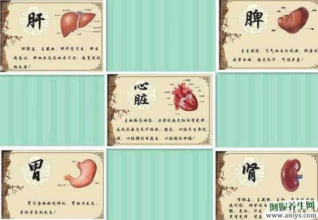 心、肝、脾、肺、肾五脏的保健养生,值得收藏