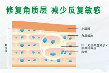 女性肌肤受损,角质层变得薄弱怎么办