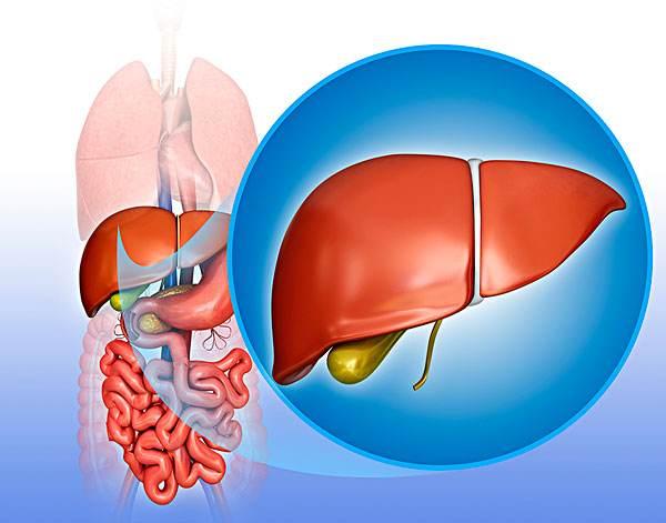 生气伤肝后如何调理 有哪几种方法