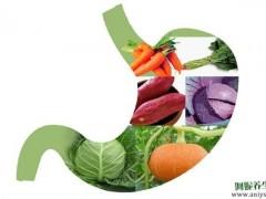 """好胃是""""养""""出来的,中医常用的养胃食疗方有哪些"""