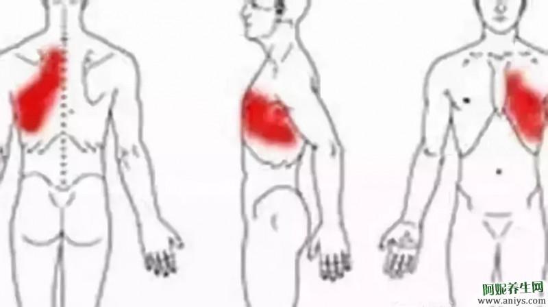 拍胸 摩胸 擦胸 拍这个部位 绝好的健康养生法图3