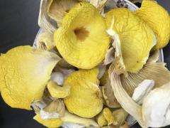 黄金菇的经典吃法,黄金菇鱼片