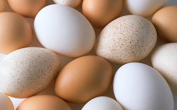 哪些鸡蛋属于坏蛋?谨防这十种鸡蛋