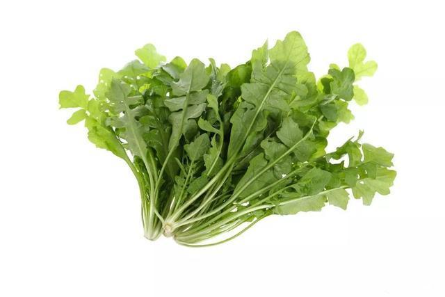 野菜:介绍4种经典养生野菜,怎能算尝过春天的味道?图1