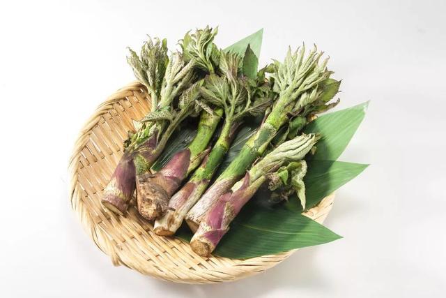 野菜:介绍4种经典养生野菜,怎能算尝过春天的味道?图2